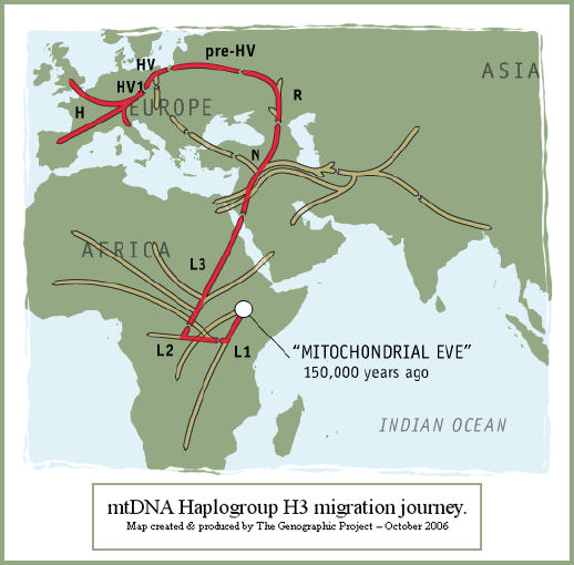 Male Haplogroup Migration Map Related Keywords & Suggestions - Male